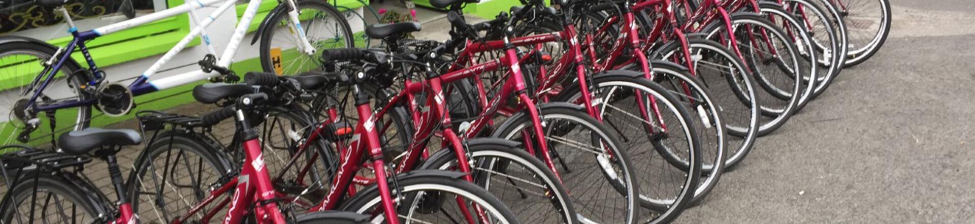 bike hire in Leitrim